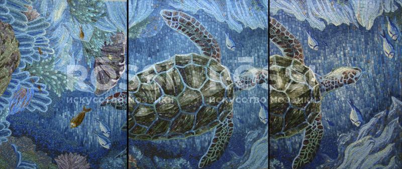 черепаха м